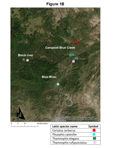 Figure 1B: Eastern Arizona and western New Mexico locations from which disease (snake fungal disease, snake mites) and bacterial community samples were collected from wild snake species from 2016-2018 by NAU personnel and collaborators. Individual snake species are noted by different colored symbols.