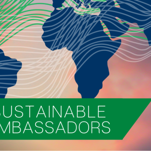 sustainable ambassadors flyer