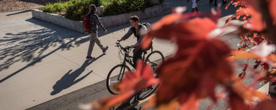 NAU student riding his bike through campus.