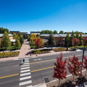 aerial photo showing central campus with a person walking in a crosswalk and highlighting the greens and reds among the trees when they are blooming