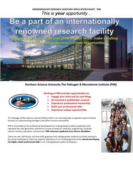 PMI Undergraduate Opportunity
