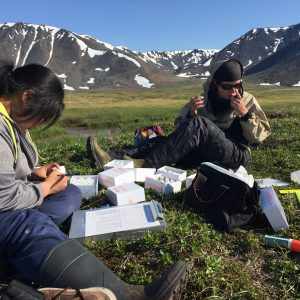 Researchers working on the ground in Alaska